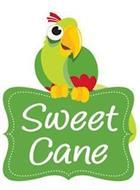 SWEET CANE