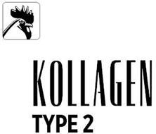 KOLLAGEN TYPE 2