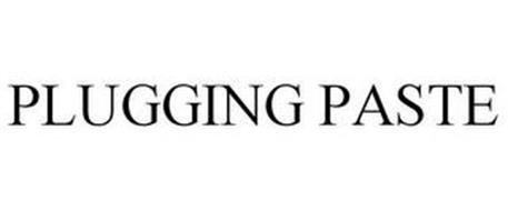 PLUGGING PASTE