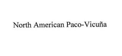 NORTH AMERICAN PACO-VICUÑA