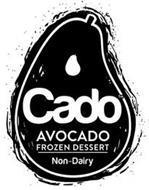 CADO AVOCADO FROZEN DESSERT NON-DAIRY