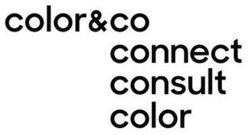 COLOR&CO CONNECT CONSULT COLOR