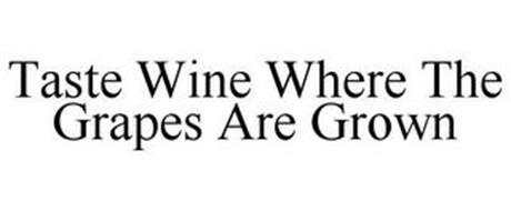 TASTE WINE WHERE THE GRAPES ARE GROWN