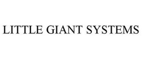 LITTLE GIANT SYSTEMS