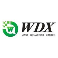W WDX MAST DYNAPOINT LIMITED