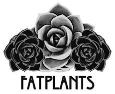 FATPLANTS