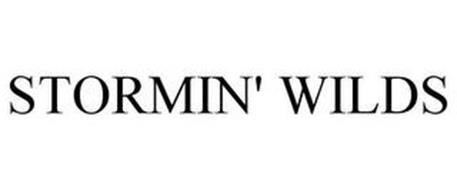 STORMIN' WILDS