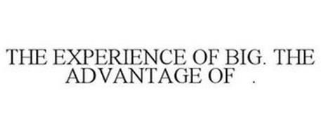 THE EXPERIENCE OF BIG. THE ADVANTAGE OF .