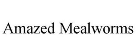 AMAZED MEALWORMS