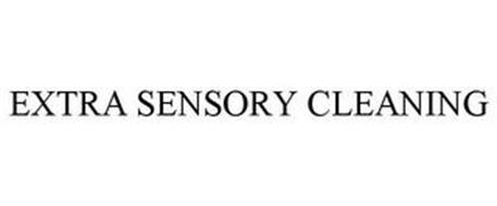 EXTRA SENSORY CLEANING