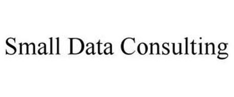 SMALL DATA CONSULTING