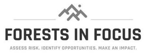 FORESTS IN FOCUS ACCESS RISK. IDENTIFY OPPORTUNITIES. MAKE AN IMPACT.