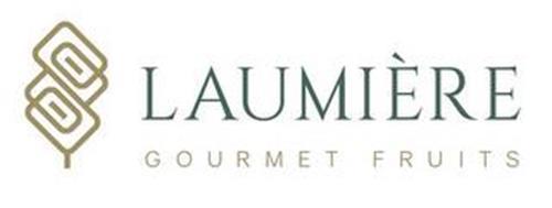LAUMIÈRE GOURMET FRUITS