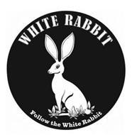 WHITE RABBIT FOLLOW THE WHITE RABBIT