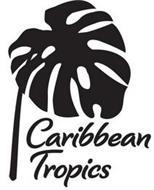 CARIBBEAN TROPICS