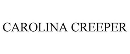 CAROLINA CREEPER