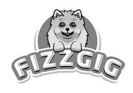 FIZZGIG