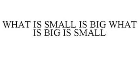 WHAT IS SMALL IS BIG WHAT IS BIG IS SMALL