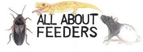 ALL ABOUT FEEDERS