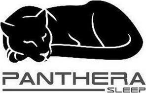 PANTHERA, SLEEP