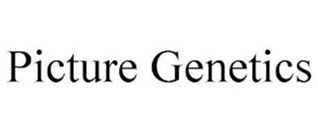 PICTURE GENETICS