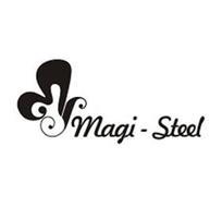 MAGI-STEEL