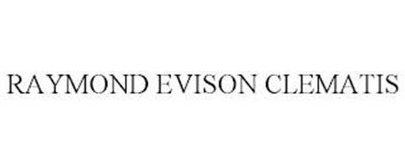 RAYMOND EVISON CLEMATIS