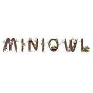 MINIOWL