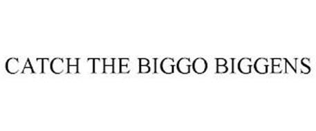 CATCH THE BIGGO BIGGENS