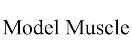 MODEL MUSCLE