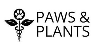 PAWS & PLANTS