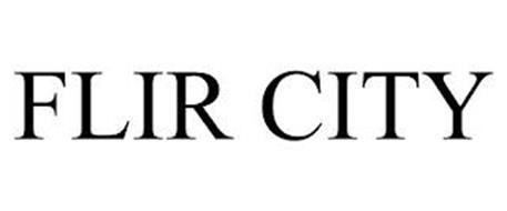 FLIR CITY