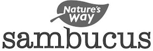 NATURE'S WAY SAMBUCUS
