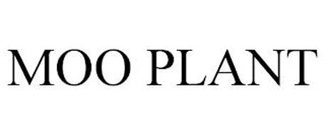 MOO PLANT