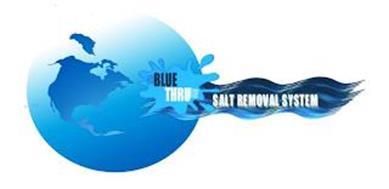 BLUE THRU SALT REMOVAL SYSTEM