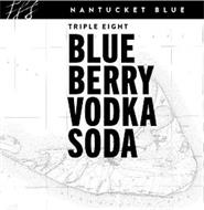 NANTUCKET BLUE TRIPLE EIGHT BLUEBERRY VODKA SODA