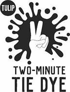 TULIP TWO MINUTE TIE-DYE