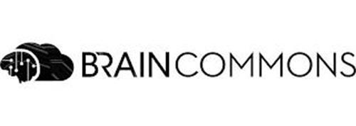 BRAINCOMMONS