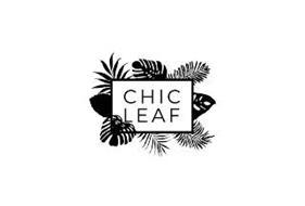 CHIC LEAF