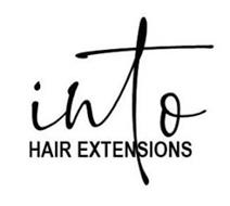 INTO HAIR EXTENSIONS