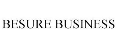 BESURE BUSINESS
