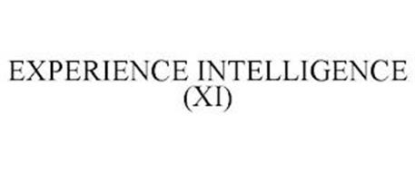 EXPERIENCE INTELLIGENCE (XI)