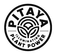 PITAYA ILLUMINATING PLANT POWER