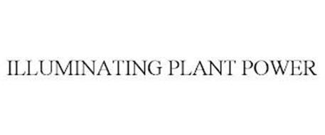 ILLUMINATING PLANT POWER