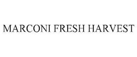 MARCONI FRESH HARVEST