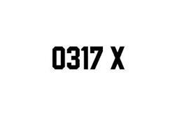 0317 X