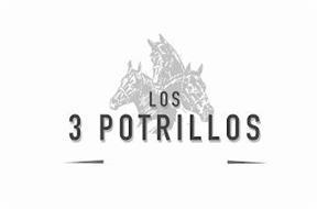 LOS 3 POTRILLOS