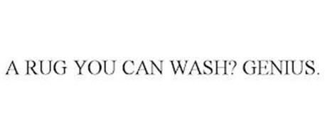 A RUG YOU CAN WASH? GENIUS.