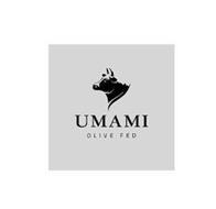 UMAMI OLIVE FED