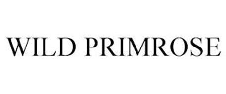 WILD PRIMROSE